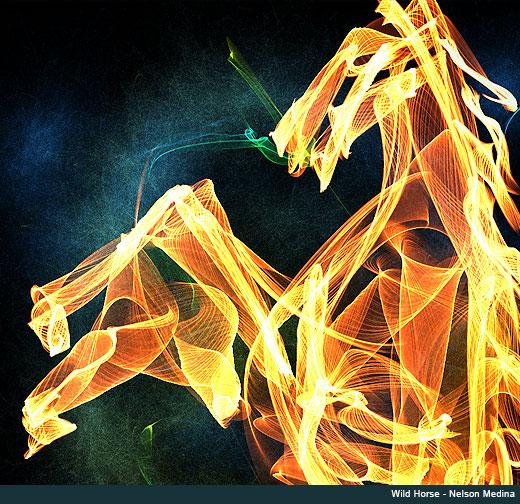 wild horse - nelson medina
